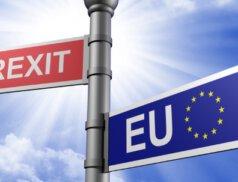Brexit - Rechtliche Folgen für die Limited, PLC und LLP